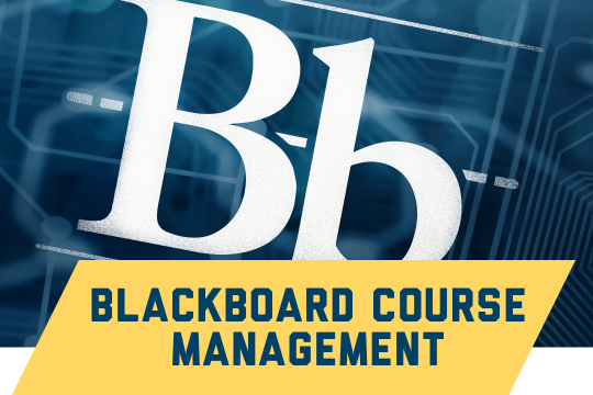 Blackboard resources